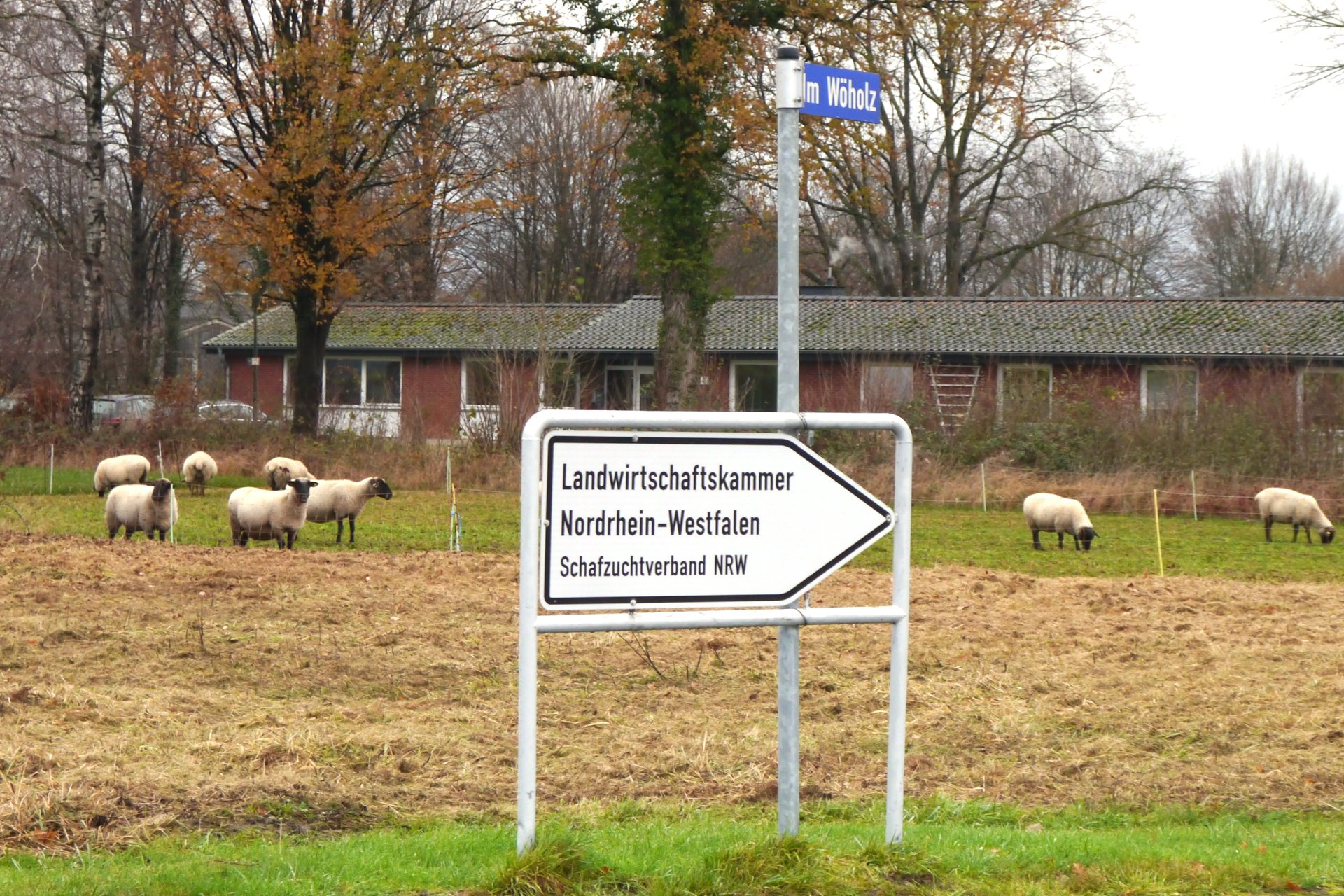 Foto: Hinweisschild zur Geschäftsstelle des Schafzuchtverbandes NRW in Lippstadt Eickelborn (© Markus Barkhausen)