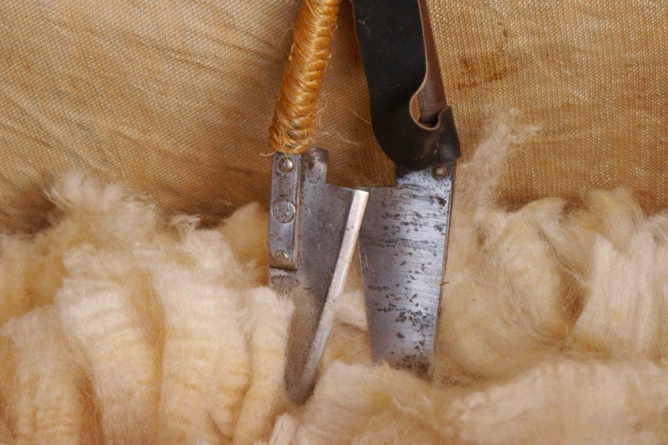 Foto: Wolle nach einem Schafschurlehrgang auf Haus Düsse (© Markus Barkhausen)
