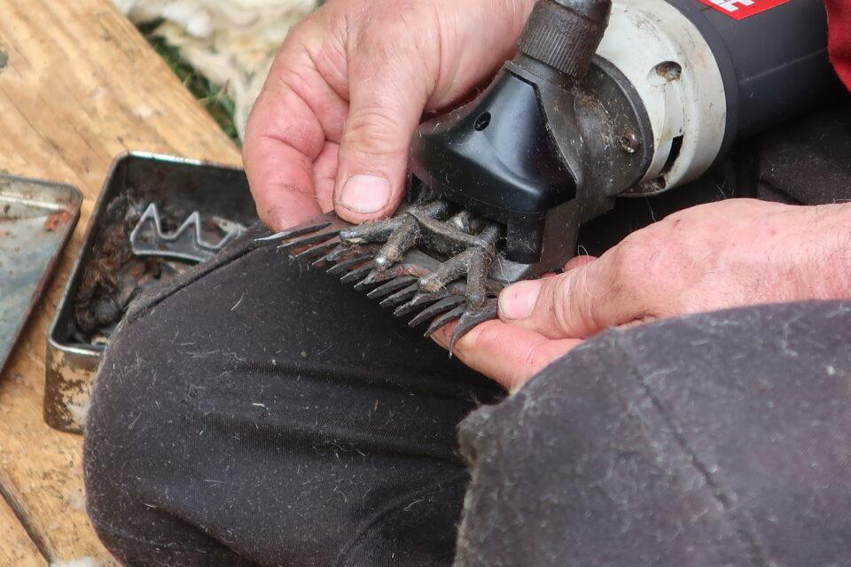 Foto: Schermaschine mit Kamm für haarige Mischwollen (© Ortrun Humpert)