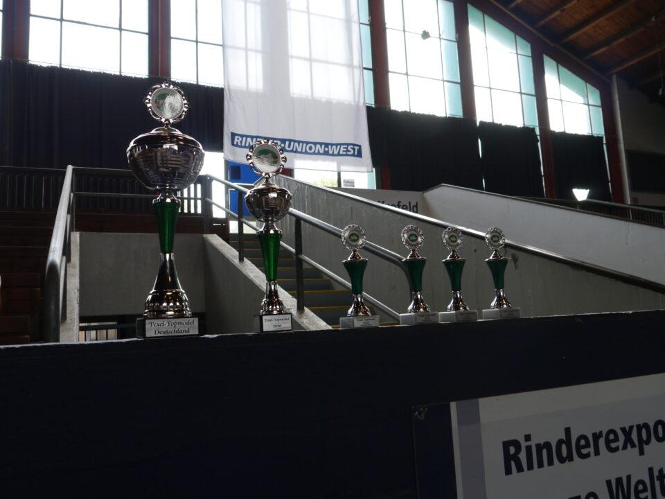 Pokale von Texelschafe Deutscland(©Schafzüchtervereinigung NRW)